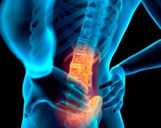 Finding Out Much More About Back Pain –How to find out