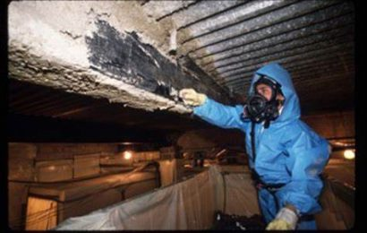 The process of professional Asbestos Removal – A need and not a want!