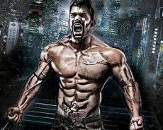 Bodybuilding Diet Plan For Male Female
